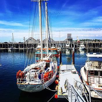 Provincetown Harbor by Jim Madigan