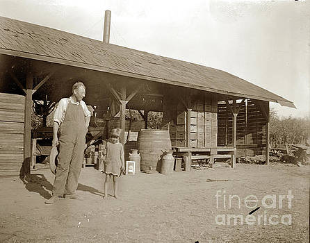 California Views Mr Pat Hathaway Archives - Prune  dipping shed near Gilroy 1900