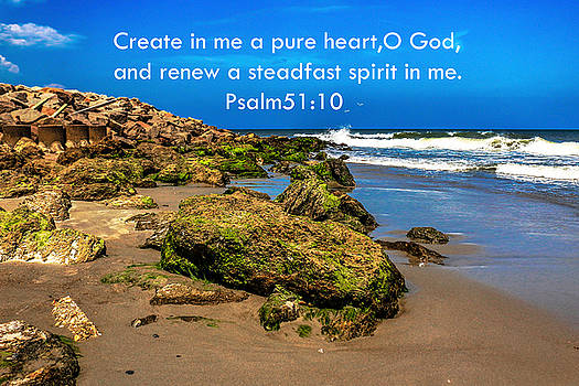 Psalm 51 by Chris Mitchell