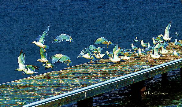 Kae Cheatham - Psychedelic Gulls