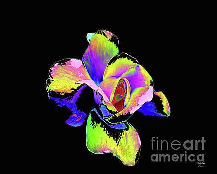 Psychedelic Rose by Wanda-Lynn Searles