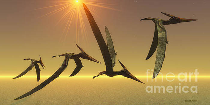 Corey Ford - Pteranodon Reptile Flight