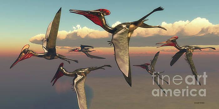 Pterodactylus Pterosaurs in Flight by Corey Ford
