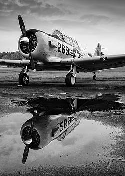 Puddle Jumper by Chris Buff