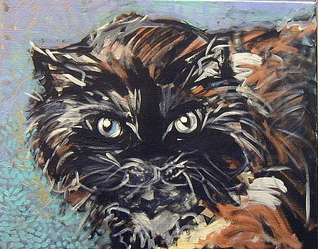 Puddy by Paula R ANDERSON