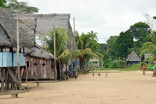 Harvey Barrison - Puerto Miguel Village Scene One