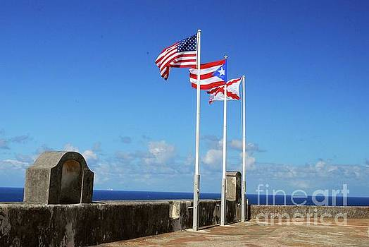 Gary Wonning - Puerto Rican Flags