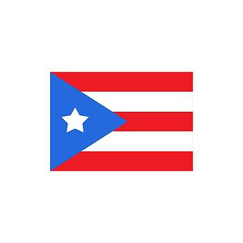 Bill Owen - Puerto Rico Flag