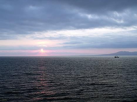 Puerto Vallarta Bay at Sunset by Tim Mattox