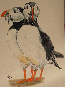 Puffin Billies by Alan Webb