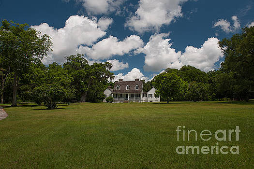 Dale Powell - Puffy White Clouds over Pinckney Plantation