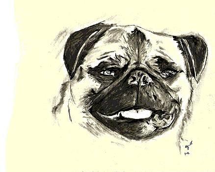 Pug by Crystal Webb