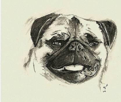 Pug1 by Crystal Webb