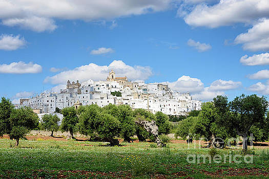 Puglia white city Ostuni with olive trees by IPics Photography