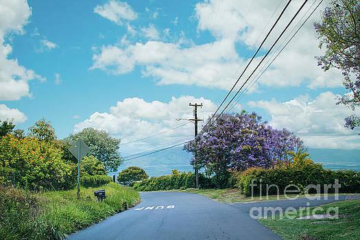 Pulehuiki Road Upcountry Kula Maui Hawaii by Sharon Mau
