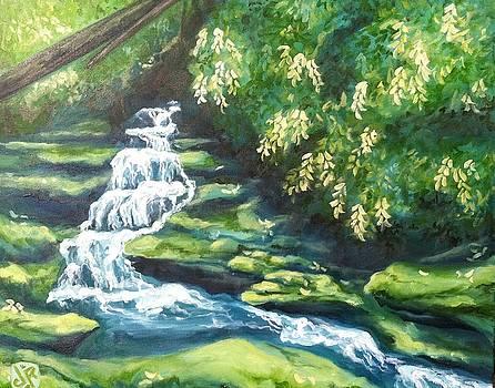 Pulliam Creek Falls by Julie Ross