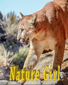 LeeAnn McLaneGoetz McLaneGoetzStudioLLCcom - Puma Mountain Lion Nature Girl