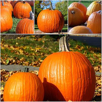 Kyle West - Pumpkin Collection