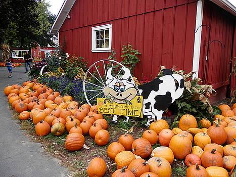 Pumpkin Farm by Deborah Kunesh