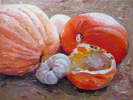 Pumpkin Farm by Natalya Shvetsky