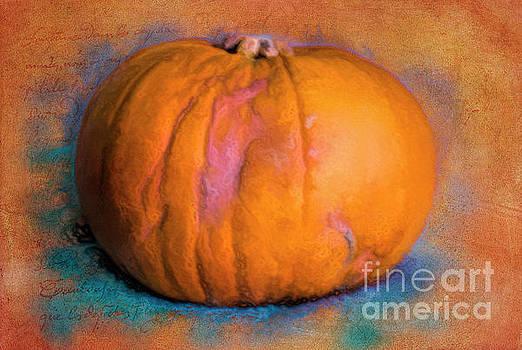 Pumpkin by Gillian Singleton
