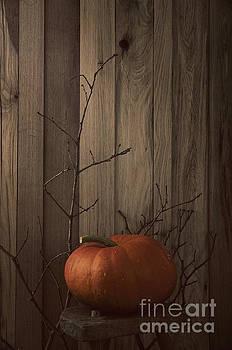 Pumpkin by Mythja Photography