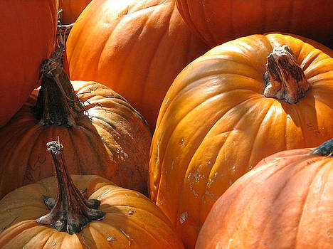 Pumpkin Patch by Deb Ingram