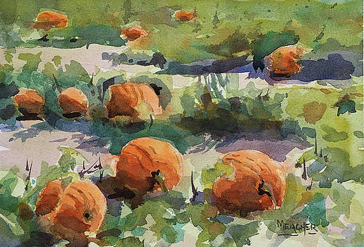 Pumpkin Patch by Spencer Meagher