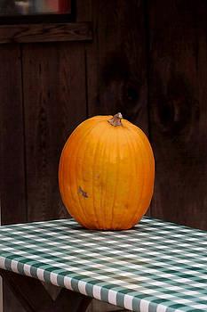 Art Block Collections - Pumpkin Portrait