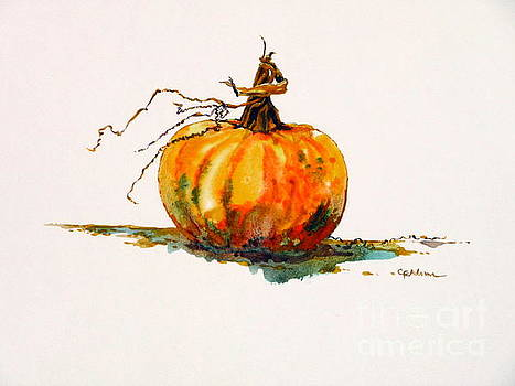 Pumpkin - warmer color by Cheryl Emerson Adams