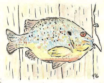 Pumpkinseed Sunfish by Matt Gaudian