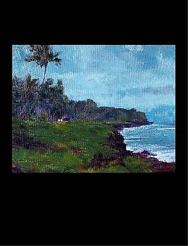Puna  by Rod Cameron