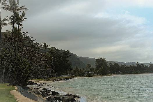 Punaluu Shoreline by Carolyn Ricks