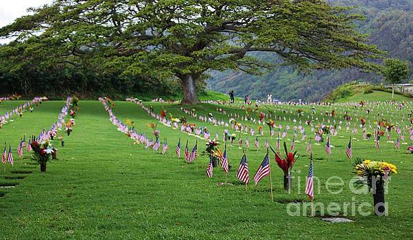 Punchbowl Cemetery 2014 by Craig Wood