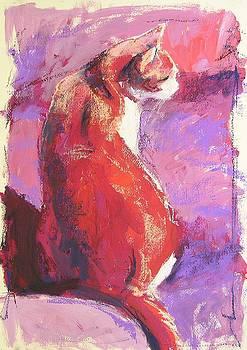 Punkin by Mary McInnis