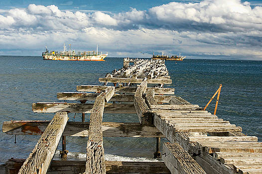 Punta Arenas by Richard Gehlbach