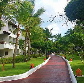 Kathy Kelly - Punta Cana Resort
