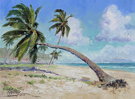 Punta Cana - Sea beach 13 by Irek Szelag