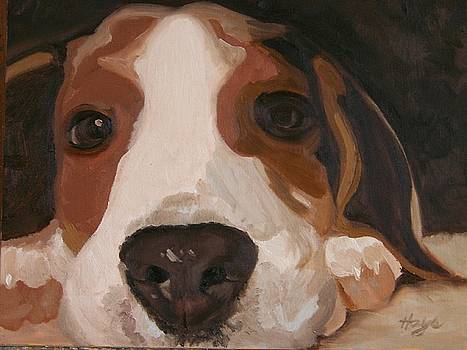 Pup by Donna Hays
