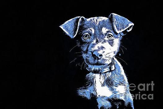 Puppy Dog Graphic Novel  by Edward Fielding
