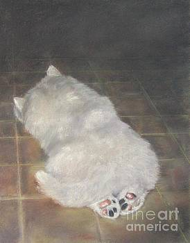 Puppy Feet by Elizabeth Ellis