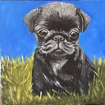 Puppy Love by Lorena De Gaitan