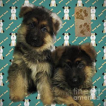 Kathryn Strick - Puppy Portrait 2016