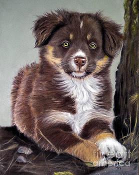 Puppy Power by Marianne Harris