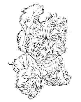 Puppy_PrintFilecopy by Stephen Carcello
