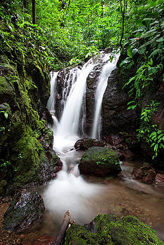 Pura Vida Waterfall by David Morefield