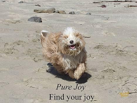 Gary Canant - Pure Joy Greeting Card