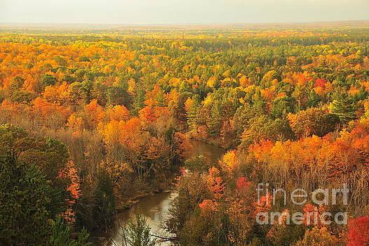 Terri Gostola - Pure Michigan Autumn