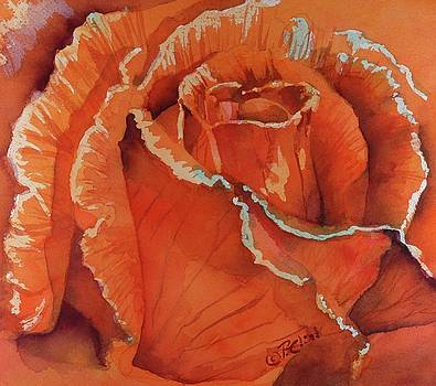 Donna Pierce-Clark - Pure Orange Delight