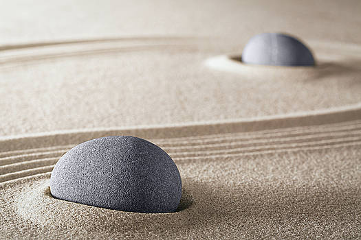 Purity Zen Meditation Garden by Dirk Ercken